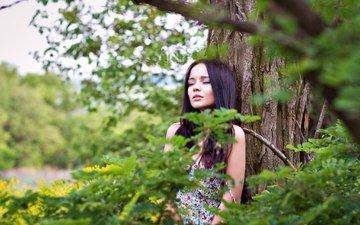 природа, дерево, лес, девушка, брюнетка, модель, закрытые глаза, ангелина петрова