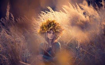 трава, листья, девушка, блондинка, взгляд, осень, волосы, лицо, клен, венок