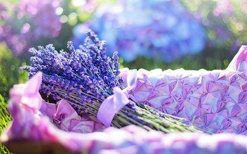 цветы, лаванда, букет