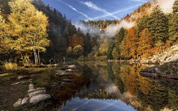 river, nature, forest, autumn, etienne ruff