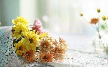 цветы, размытость, букет, хризантемы