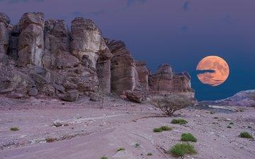 ночь, скалы, пейзаж, пустыня, луна