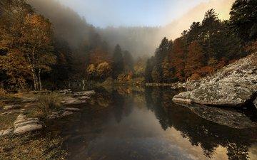 деревья, река, природа, лес, туман, осень, etienne ruff