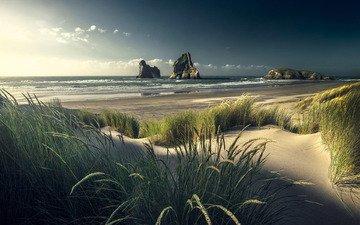 небо, трава, скалы, пейзаж, море, песок, пляж, колоски