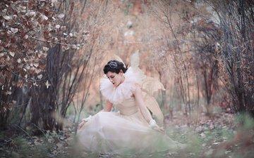 деревья, лес, девушка, платье, осень, крылья, модель, фея, макияж, боке, kelly mccarthy, okelly mccarthy