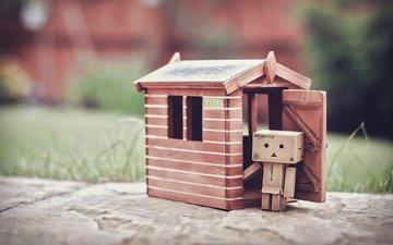 house, box, danbo, cardboard robot, dumbo