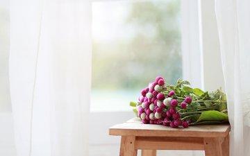цветы, букет, окно, занавески, табурет