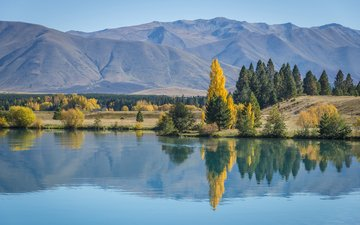 trees, lake, mountains, nature, reflection, autumn, new zealand, daniela a. nievergelt