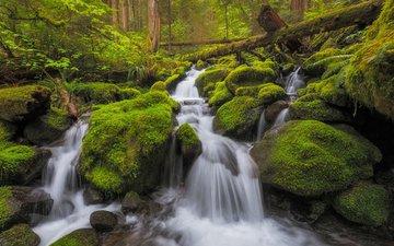 river, nature, stones, waterfall, moss