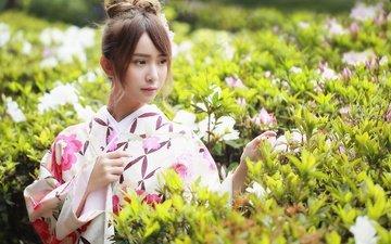 цветы, растения, девушка, взгляд, модель, волосы, лицо, кимоно, азиатка