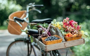 flowers, summer, fruit, vegetables, bike, bokeh