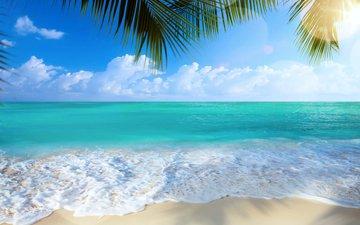 море, пляж, тропики, 28