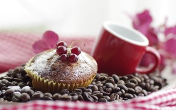 berry, grain, coffee, mug, cakes, dessert, currants, tablecloth, cupcake