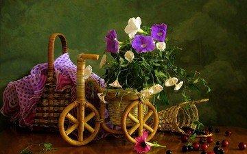 цветы, букет, ягоды, вишня, велосипед, корзинка, смородина, композиция, вьюнок