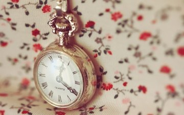 macro, watch, time, pendant, flowers, chain, dial