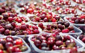 черешня, ягоды, вишня, контейнеры