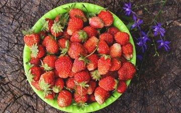 цветок, лето, клубника, ягоды, пень, миска
