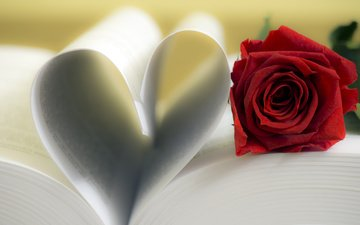 flower, rose, heart, leaves, book, page