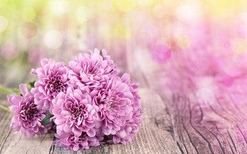 цветы, хризантемы, боке, деревянная поверхность