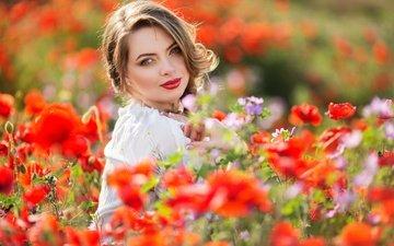 цветы, девушка, поле, лето, взгляд, маки, руки, макияж, прическа, фотосессия, боке