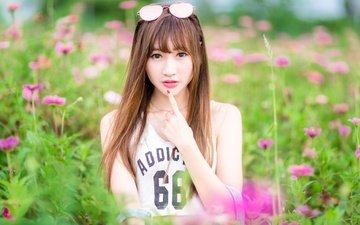 цветы, девушка, поле, взгляд, очки, модель, волосы, азиатка, длинные волосы, боке