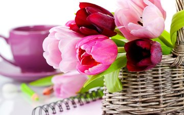 flowers, pencils, basket, tulips, cup, notebook, notepad