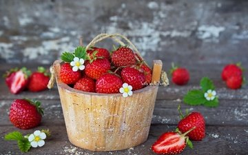 flowers, leaves, strawberry, berries