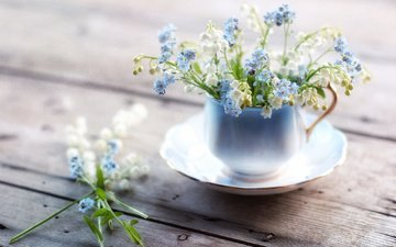 flowers, macro, lilies of the valley, board, cup, forget-me-nots