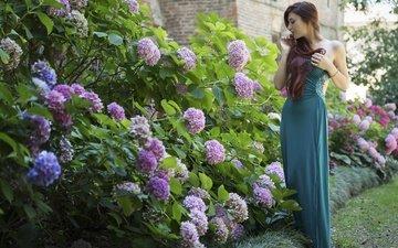 цветы, девушка, платье, лето, модель, волосы, елена, гортензия