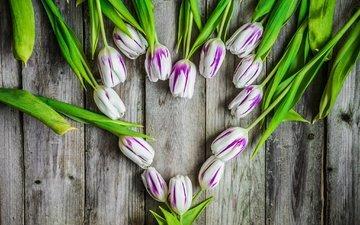 flowers, heart, board, tulips