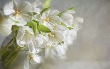 цветы, лепестки, букет, белые, ваза, живопись