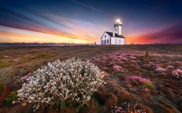 the sky, light, flowers, sunset, lighthouse, coast, o.d photographies