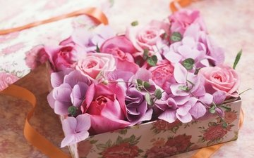 flowers, roses, petals, tape, gift, box