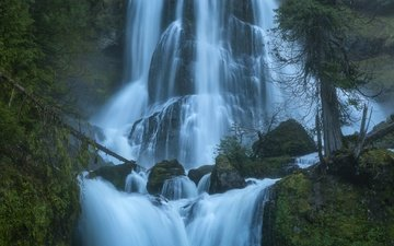 trees, stones, waterfall, the columbia river gorge, cascade, washington