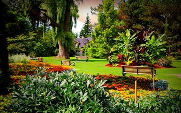 trees, the bushes, bench, canada, lawn, marigolds, gardens