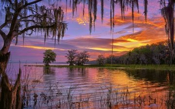 the sky, clouds, trees, lake, morning, dawn, fl, florida, lake iskapoga, lake istokpoga, lake placid