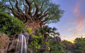 the sky, trees, plants, park, waterfall, fl, disney world