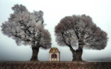 деревья, природа, туман, часовня