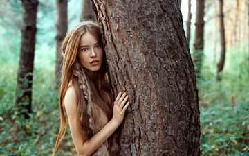 trees, nature, tree, forest, girl, look, red, hair, face, trunk, braid, freckles