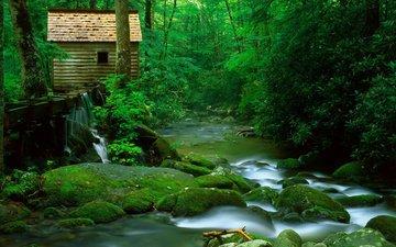 деревья, река, камни, лес, скала, дом, мох, плотина, горная речка