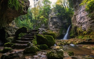 trees, rocks, stones, greens, ladder, stream, waterfall, switzerland, moss, stage