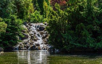 деревья, солнце, камни, зелень, парк, водопад, пруд, германия, берлин