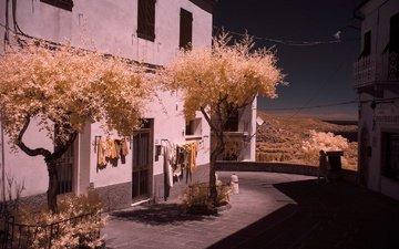 trees, street, house, italy, tuscany, the island of elba, infrared the, livorno, capoliveri