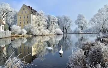 trees, winter, reflection, the bushes, castle, frost, birds, pond, germany, swans, bayern