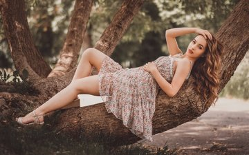 tree, dress, pose