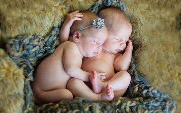 цветок, сон, дети, ребенок, одеяло, двое, мех, младенцы