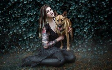 девушка, фон, взгляд, собака, волосы, лицо, макияж
