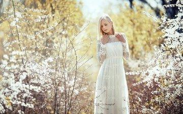 цветы, девушка, блондинка, ветки, лето, модель, белое платье, tatjana
