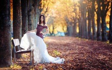 деревья, листья, девушка, парк, стволы, осень, скамейка, скамья, аллея, голые плечи