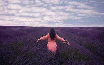 the sky, flowers, clouds, girl, field, lavender, bees, lichon, pink dress